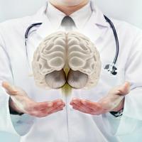 Gut Brain Connection - analyze