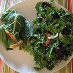 Quick and Easy Healthy Lunch Suggestions: Raw Food on the Run