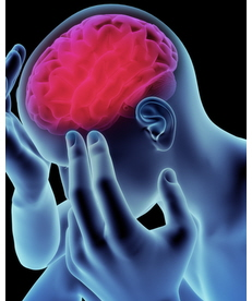 brain conditions associated with gluten