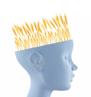 Radio Show: Gluten-Related Disorders and How It Affects the Brain