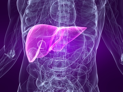The Role of Liver Detoxification in Hormonal Imbalance