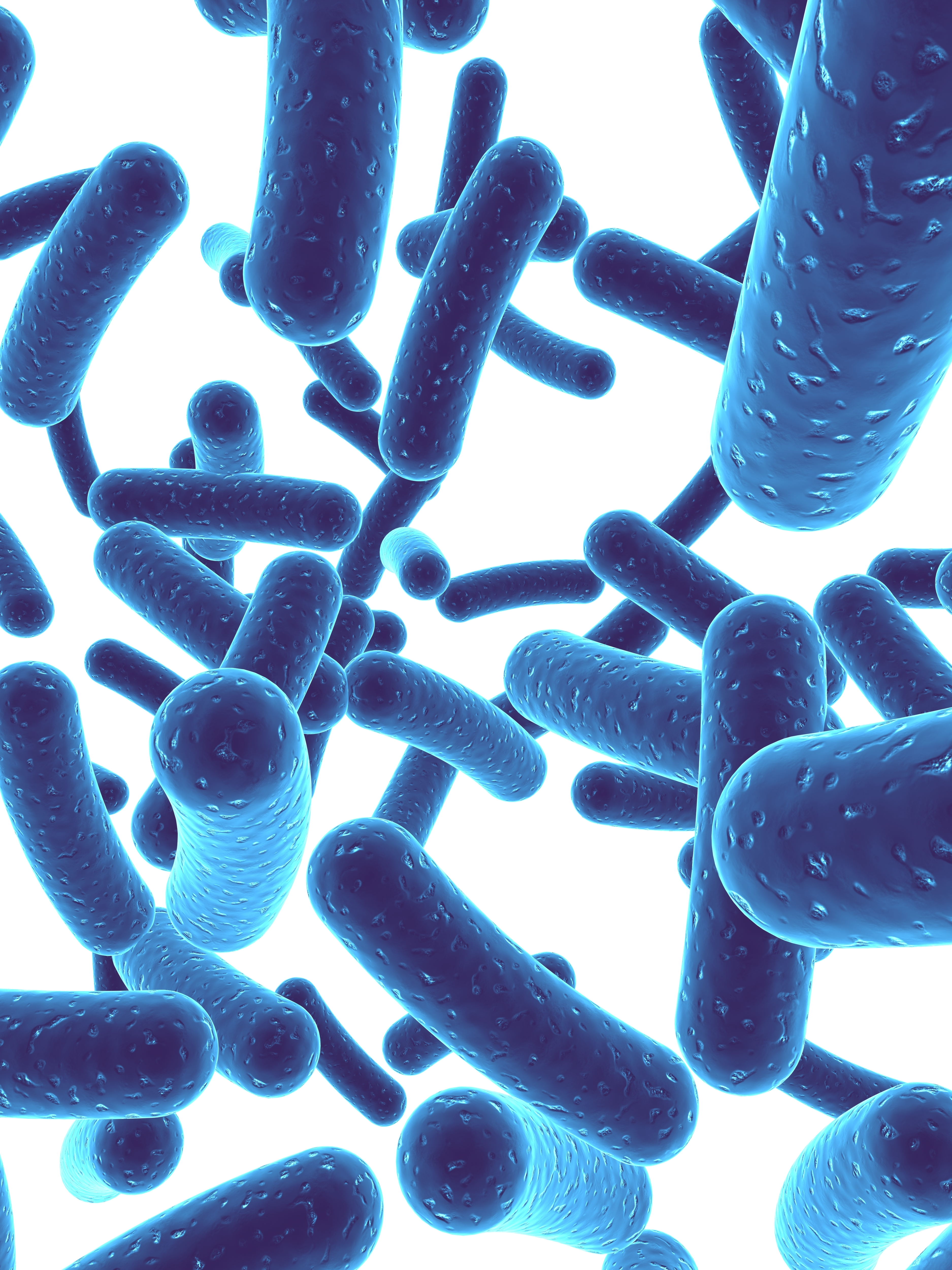 Practitioner Corner: The Importance of the Gut Microbiome in Healing