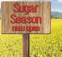 Cold Season, Flu Season – Sugar Season?