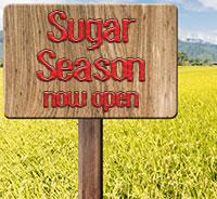 sugar_season1