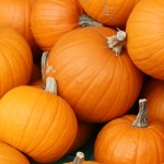 Practitioner Corner: Nutritious and Heart Healthy Pumpkin Seeds