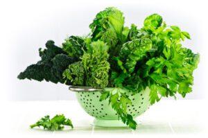 Book-Green-Leafy-Veggetables