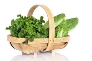 Lettuce Varieties in Rustic Basket